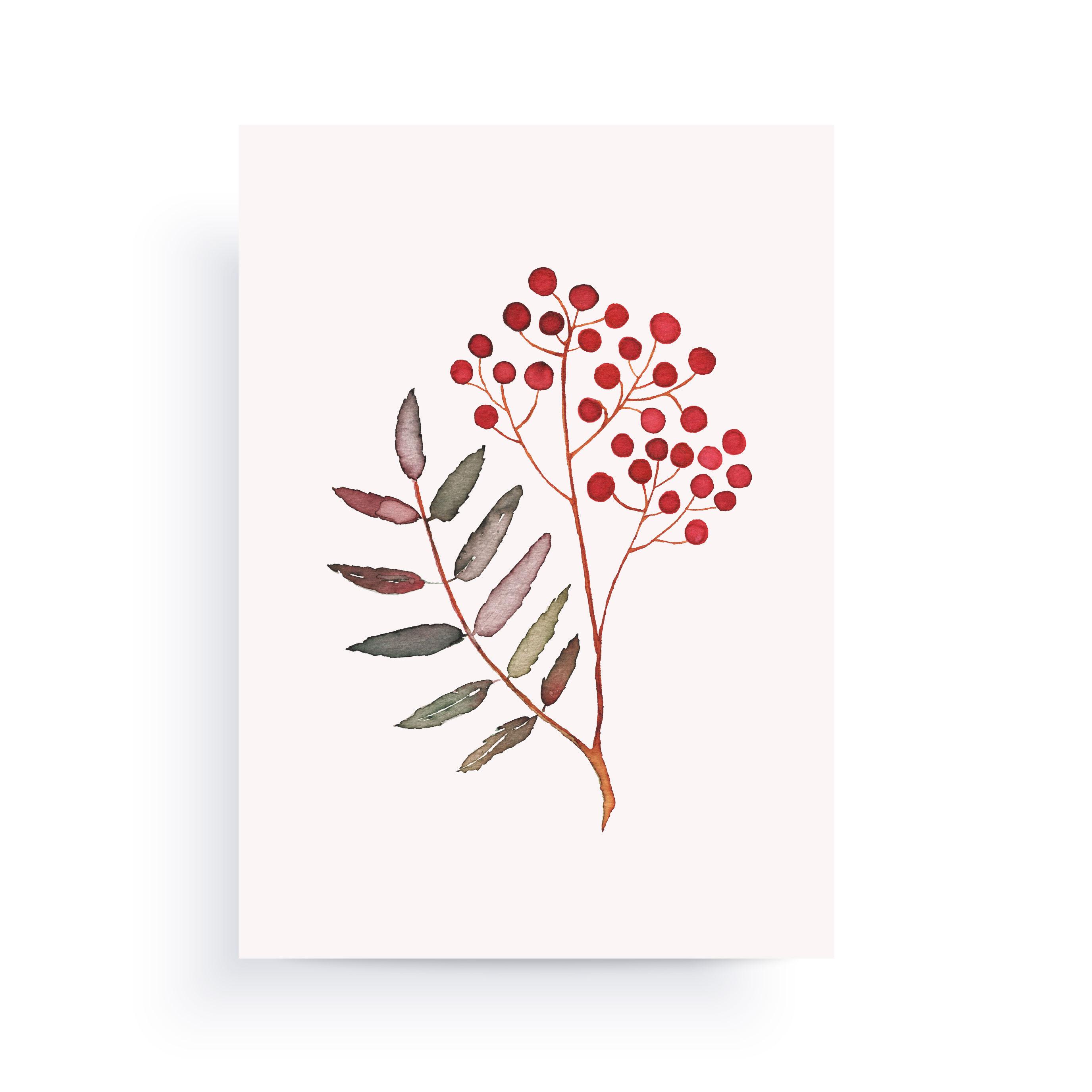 pihlaja kortti
