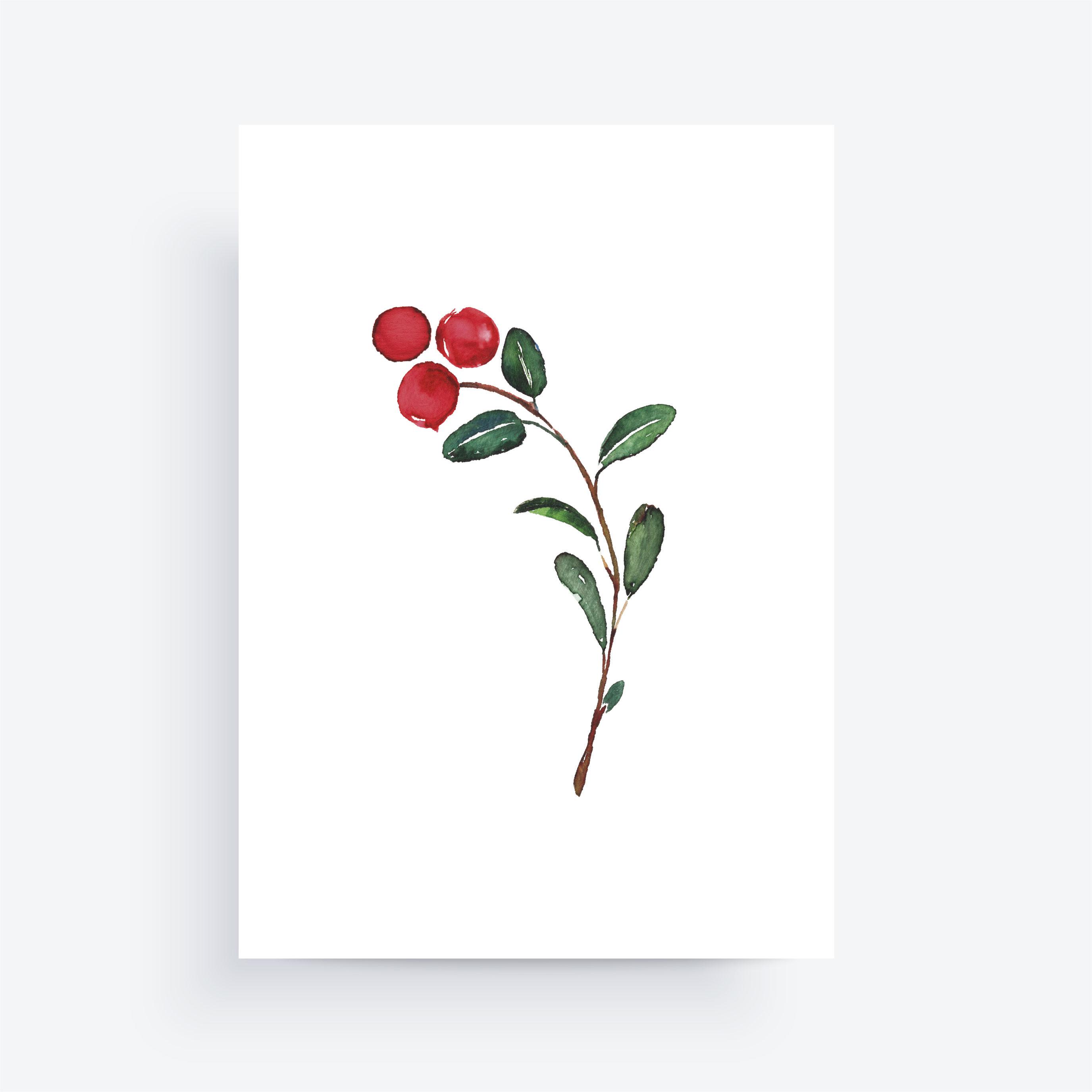 puolukka kortti