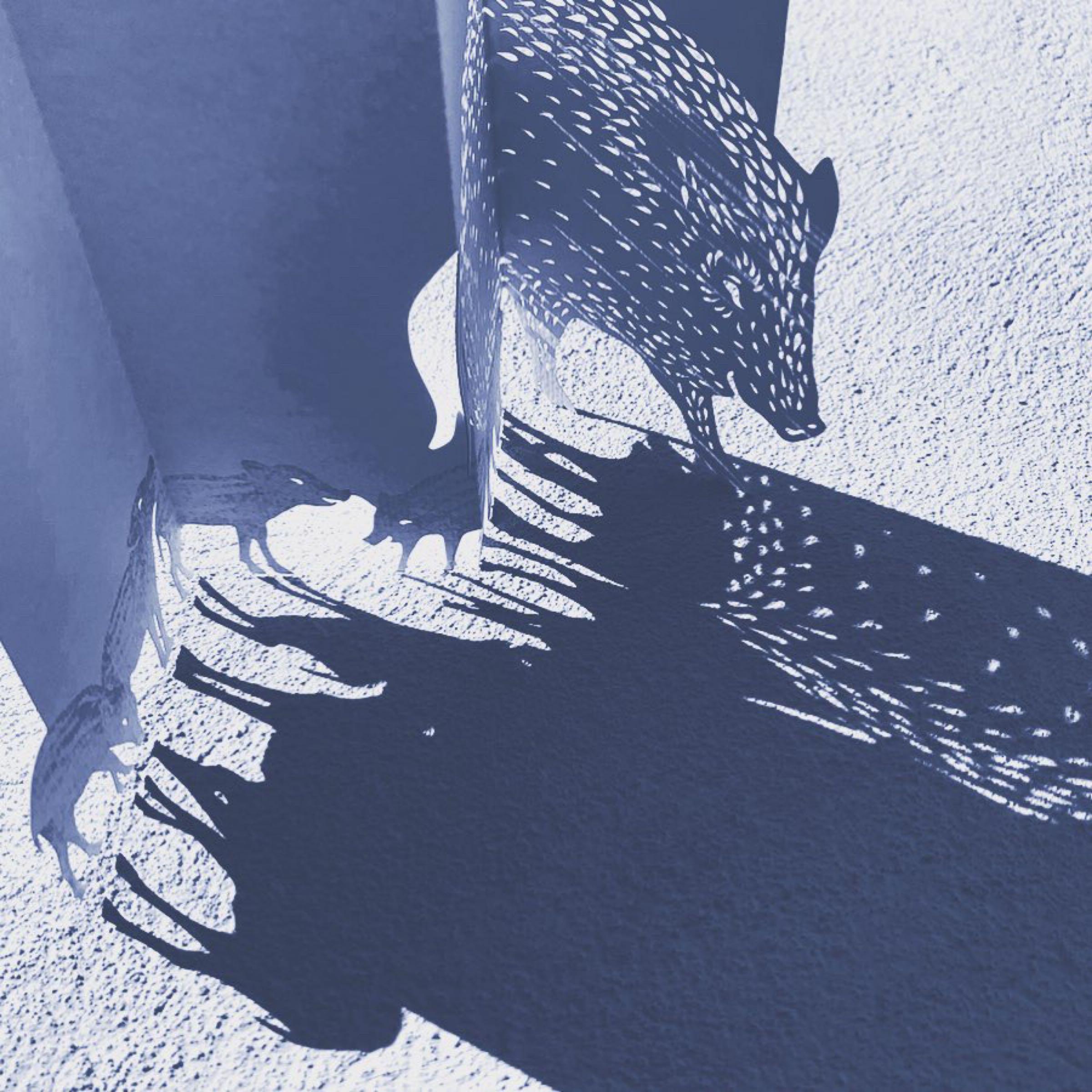Paper Art 3D Kort – Vildsvin
