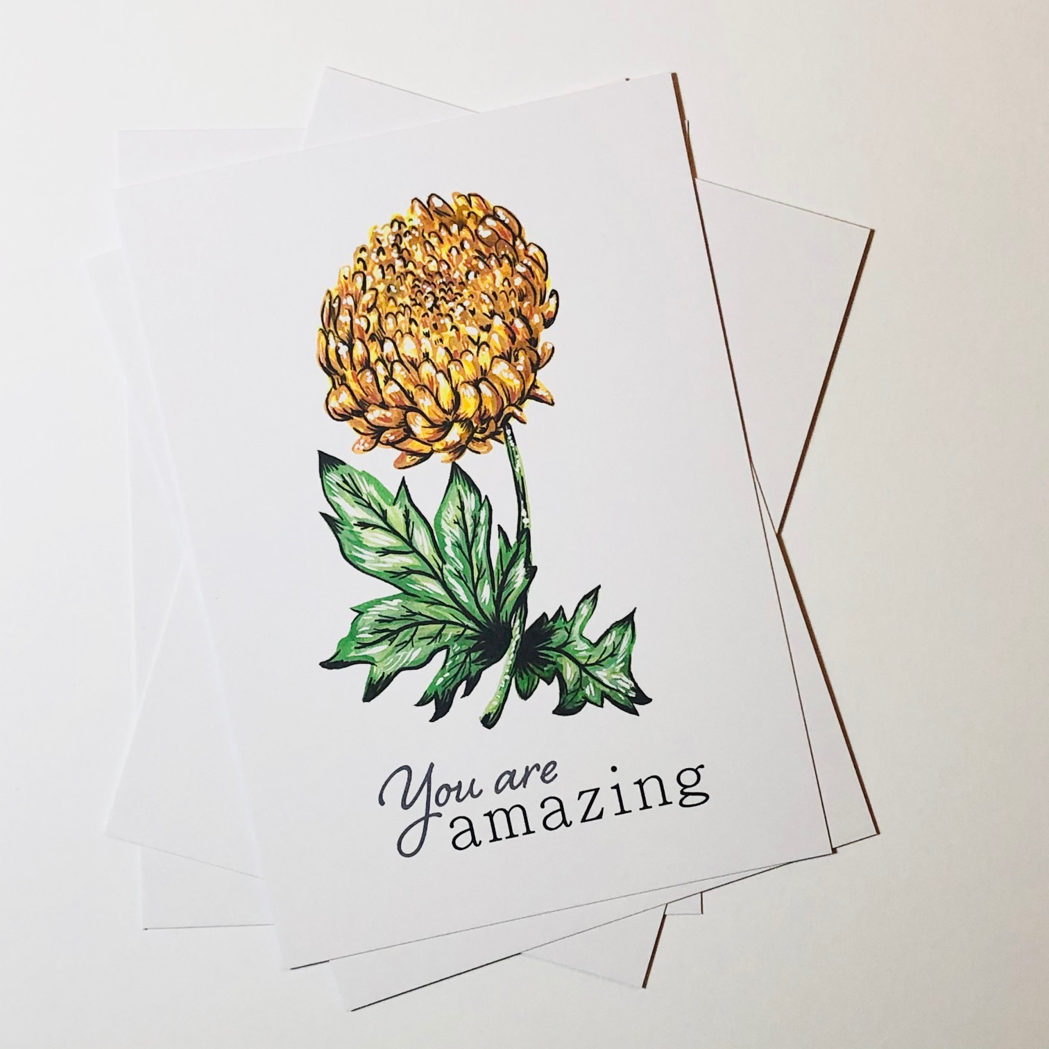 Botanical Postcard Set by Amy Harwood