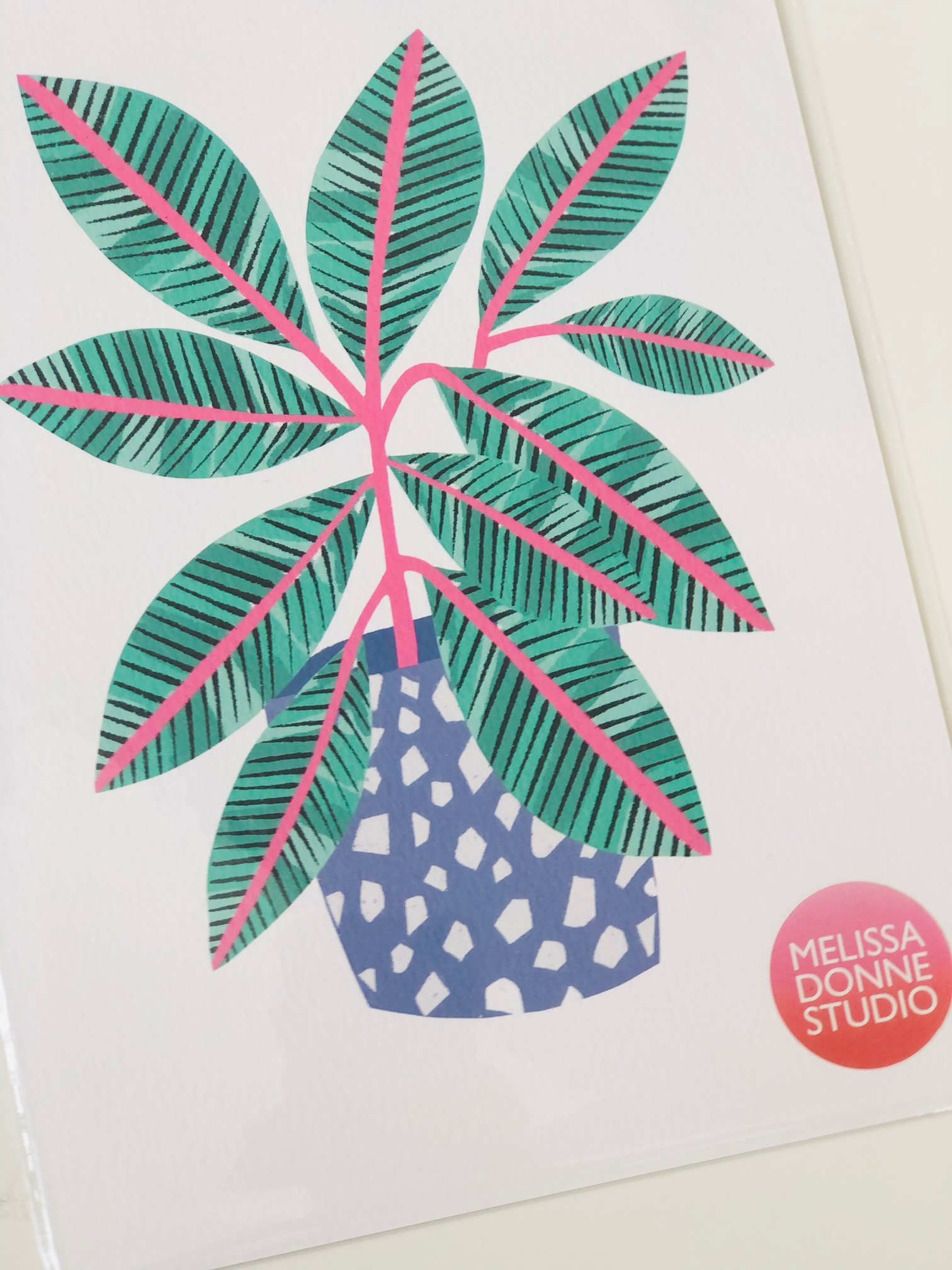 'Plant in Terrazzo Pot' A4 Digital Print by Melissa Donne