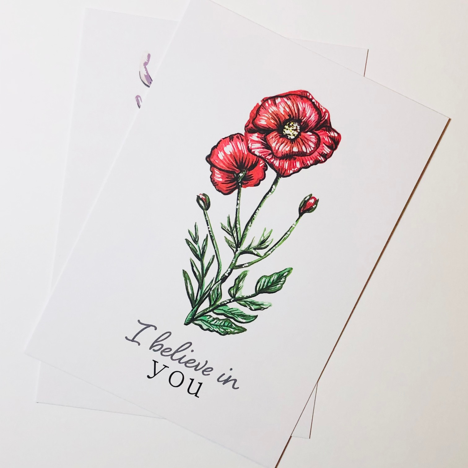 Botanical Postcard Set by Amy Harwood
