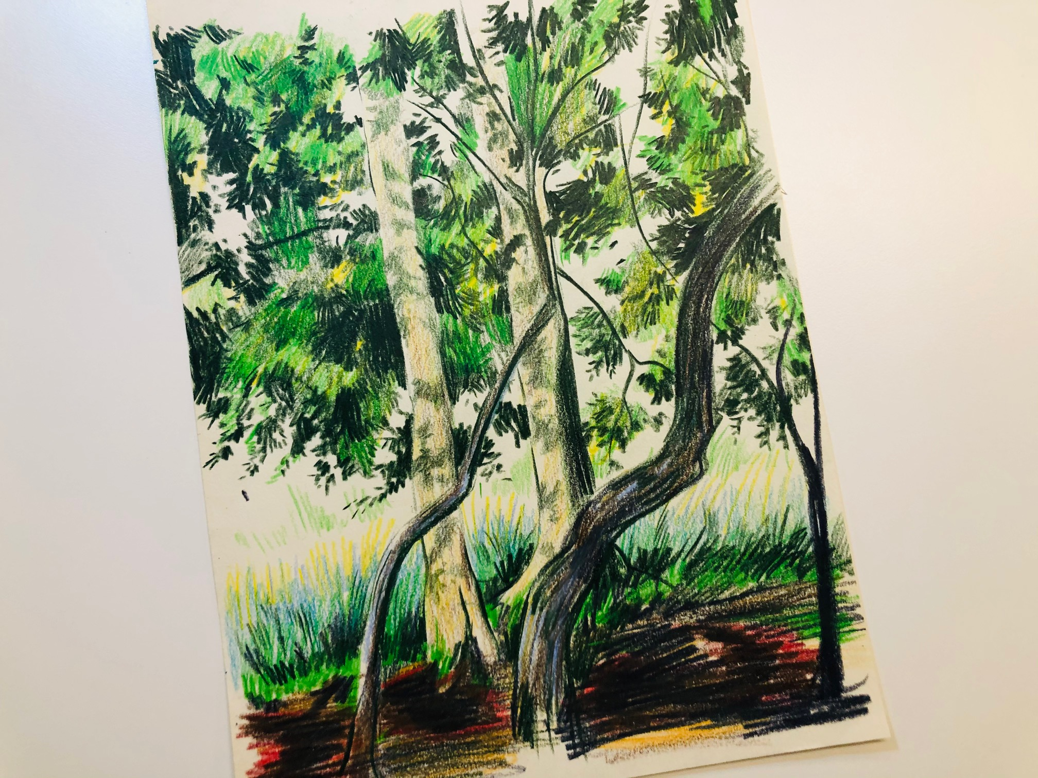 'Winchester Trees' colour sketch on paper by Jade Anthony