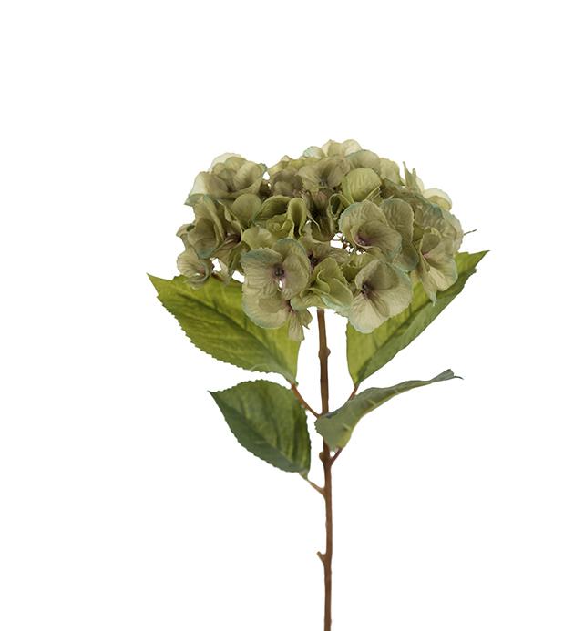 HORTENSIA GREEN 45 CM