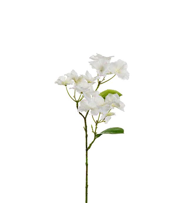 HORTENSIA WHITE 50 CM