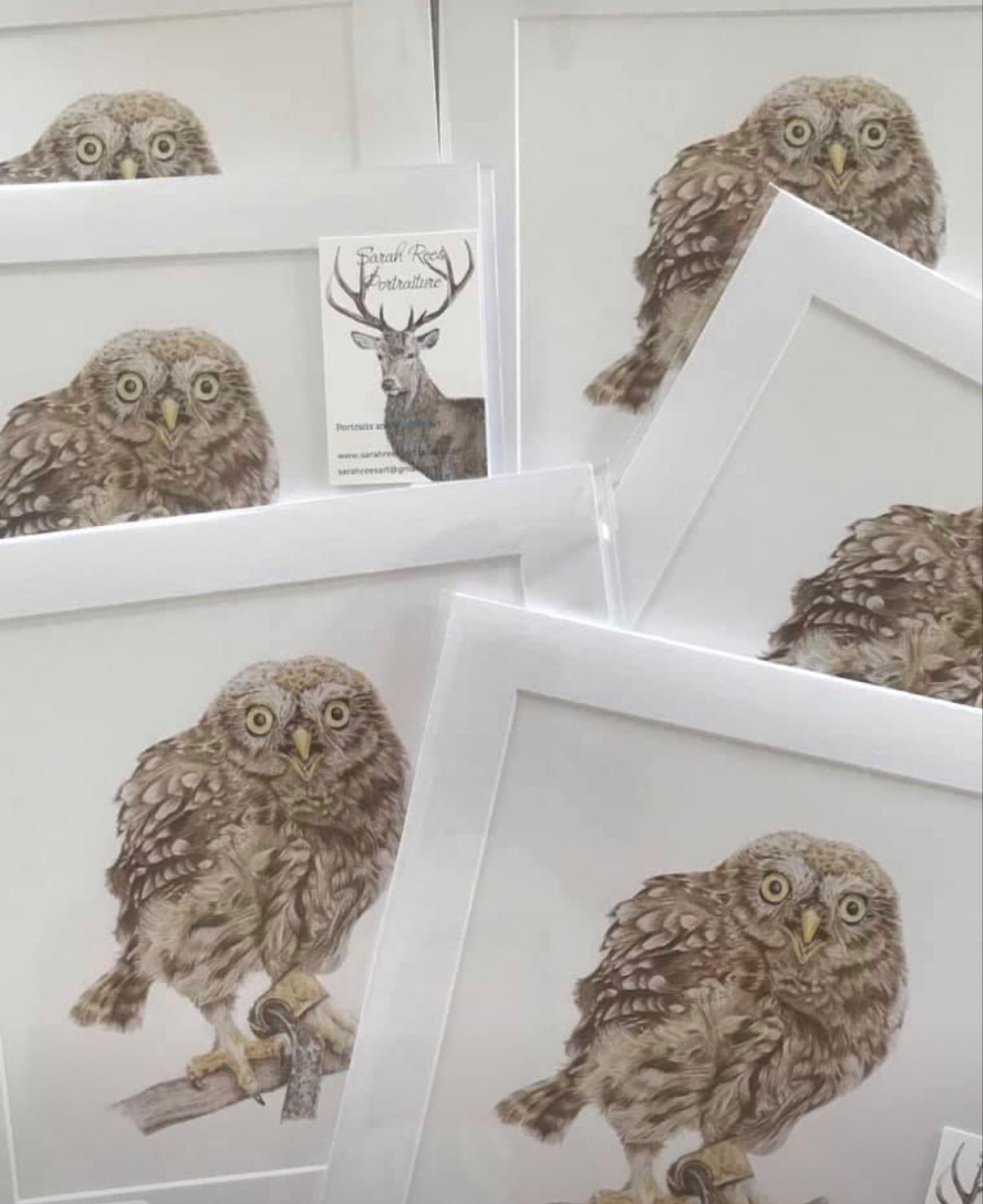 Owl print - Sarah Rees