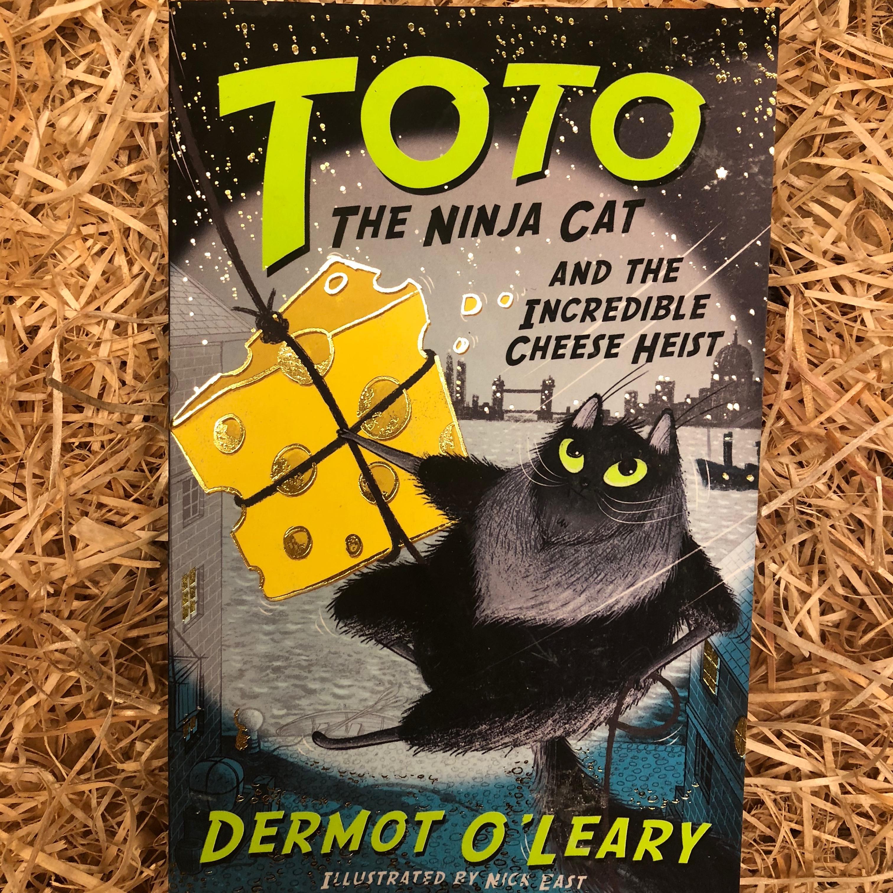 Toto the Ninja Cat