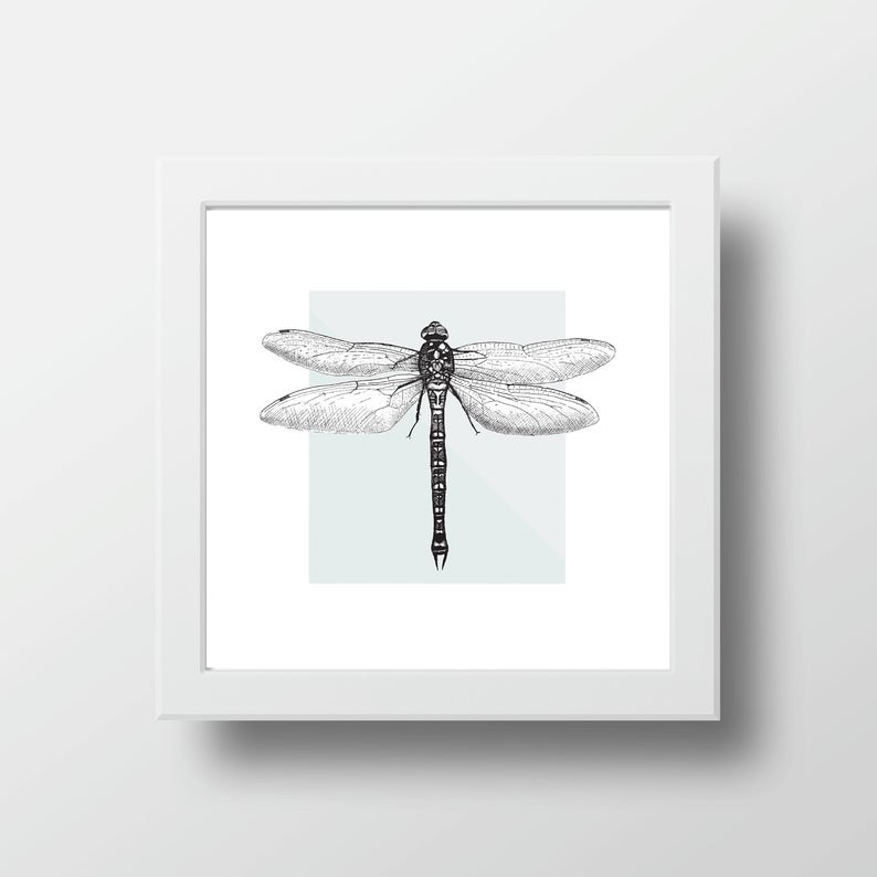 Framed dragonfly print
