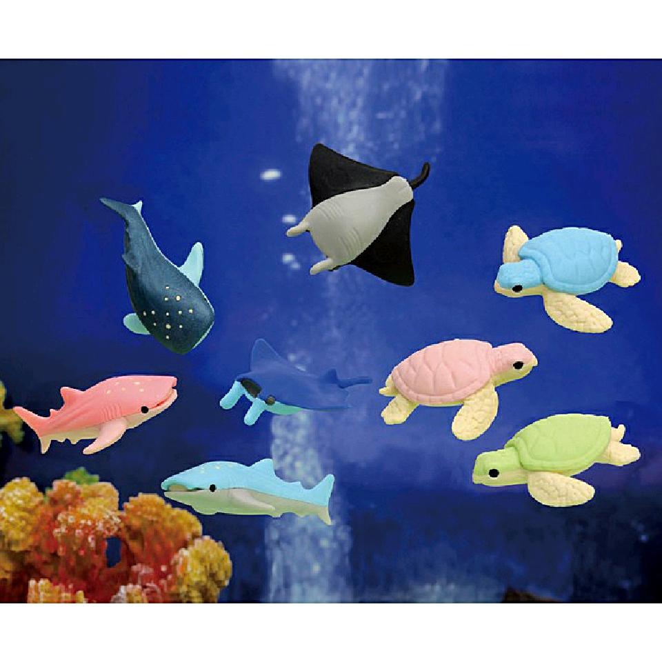 Iwako sudd - Akvarie