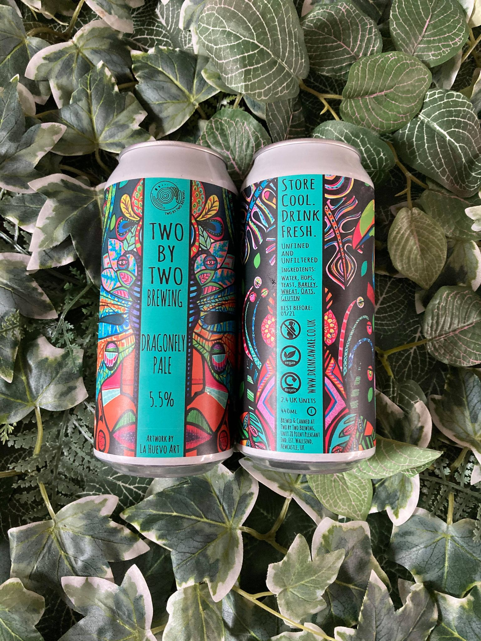 Two By Two - Dragonfly Pale 5.5%