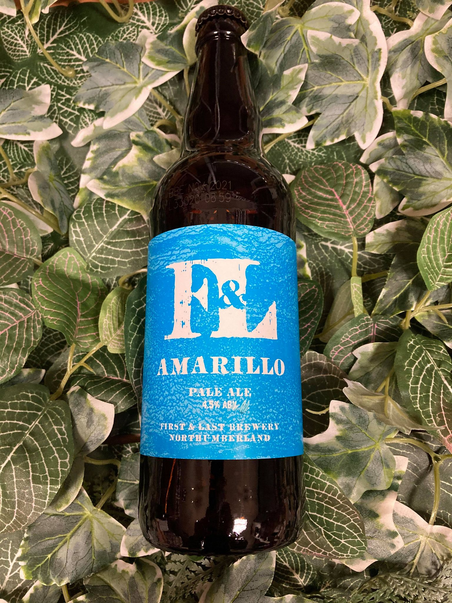 First & Last - Amarillo 4.5%