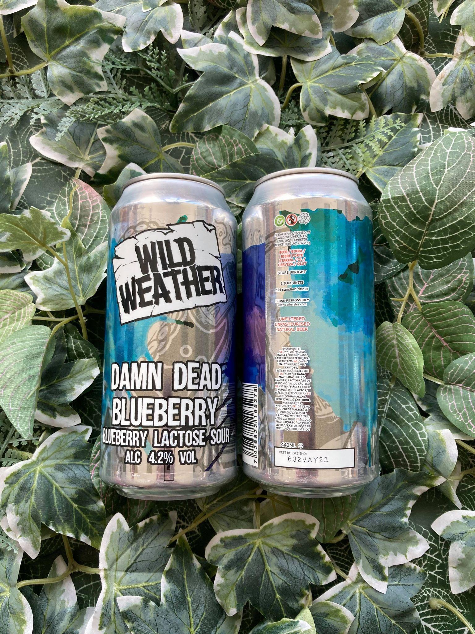 Wild Weather - Damn Dead Blueberry 4.2%
