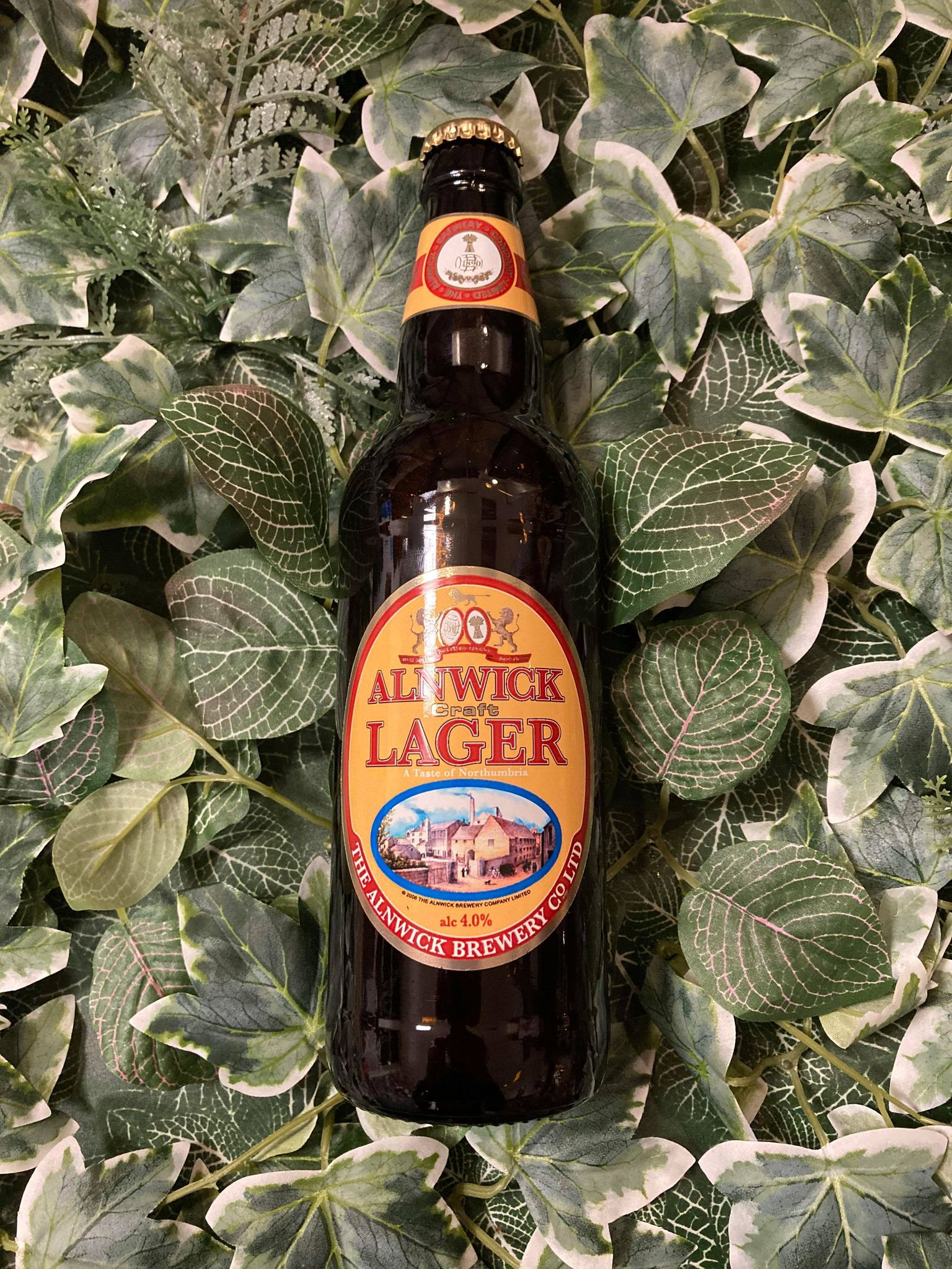 Alnwick - Lager 4%