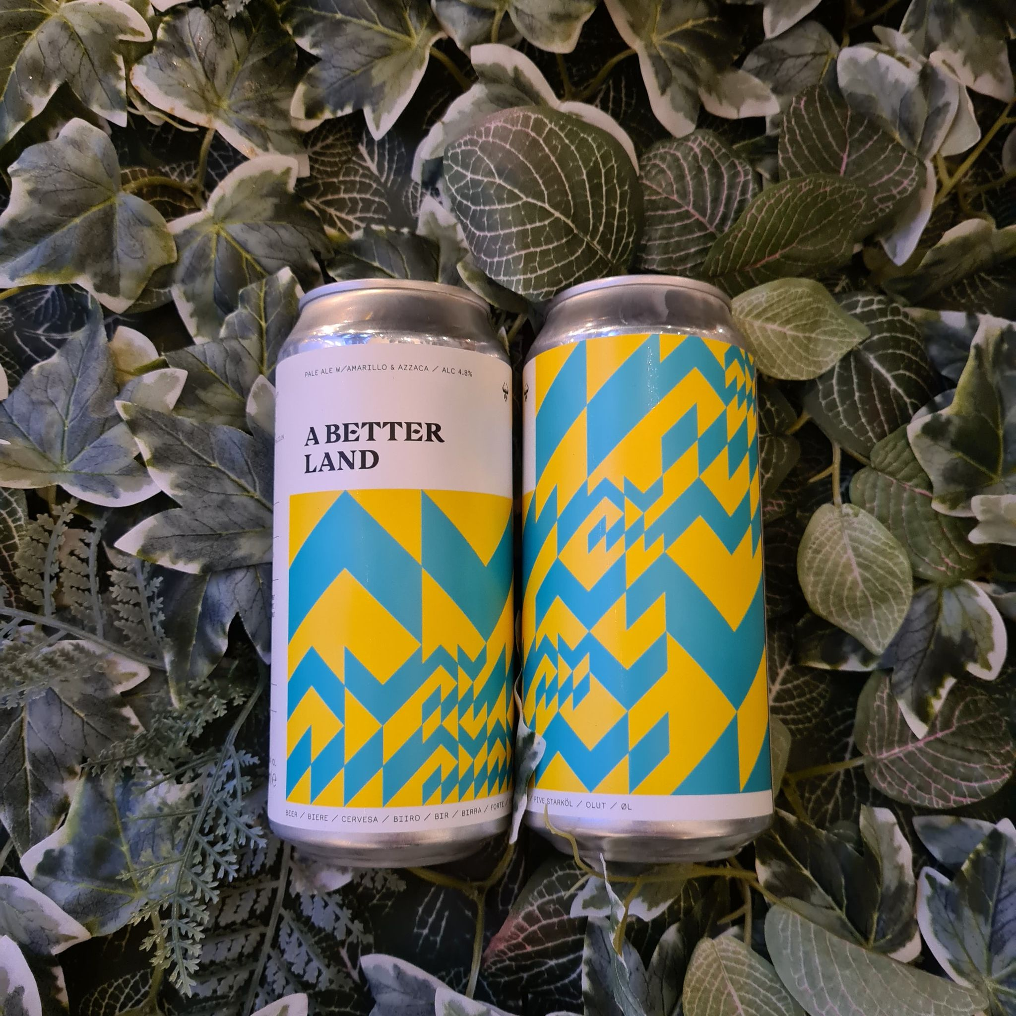 *Reduced - Short Dated* Black Lodge - A Better Land 4.8%