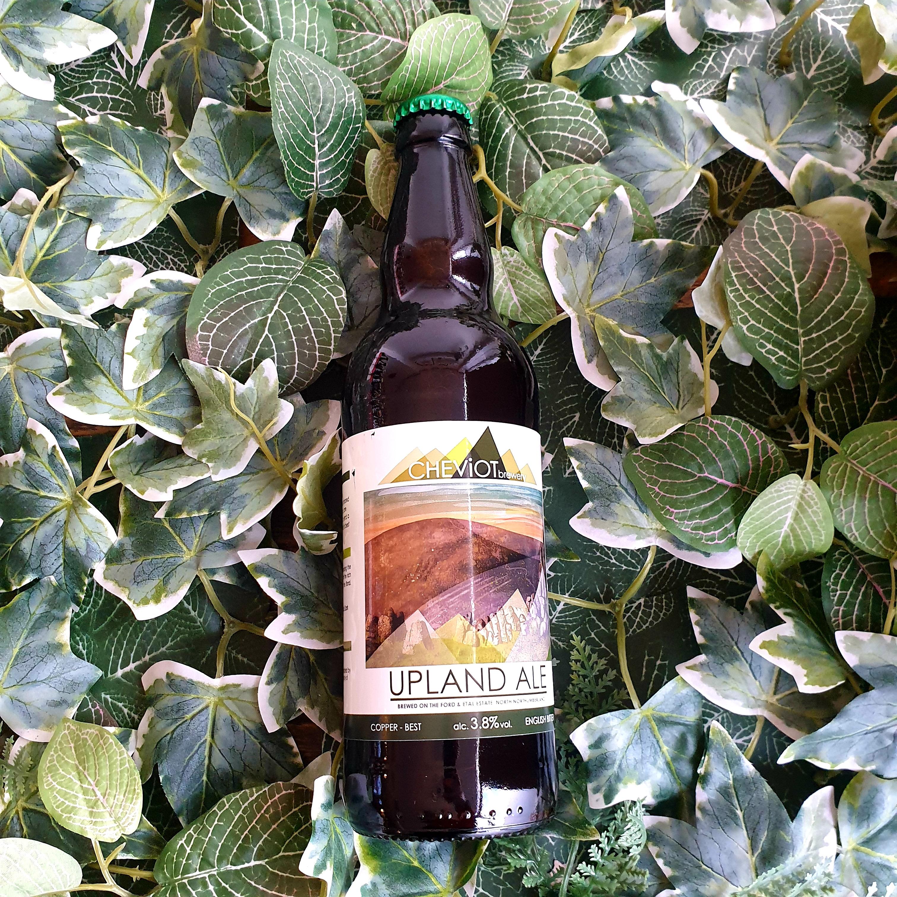 Cheviot - Upland Ale 3.8%