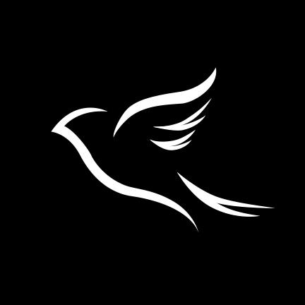 JAYE BIRD AESTHETICS LIMITED