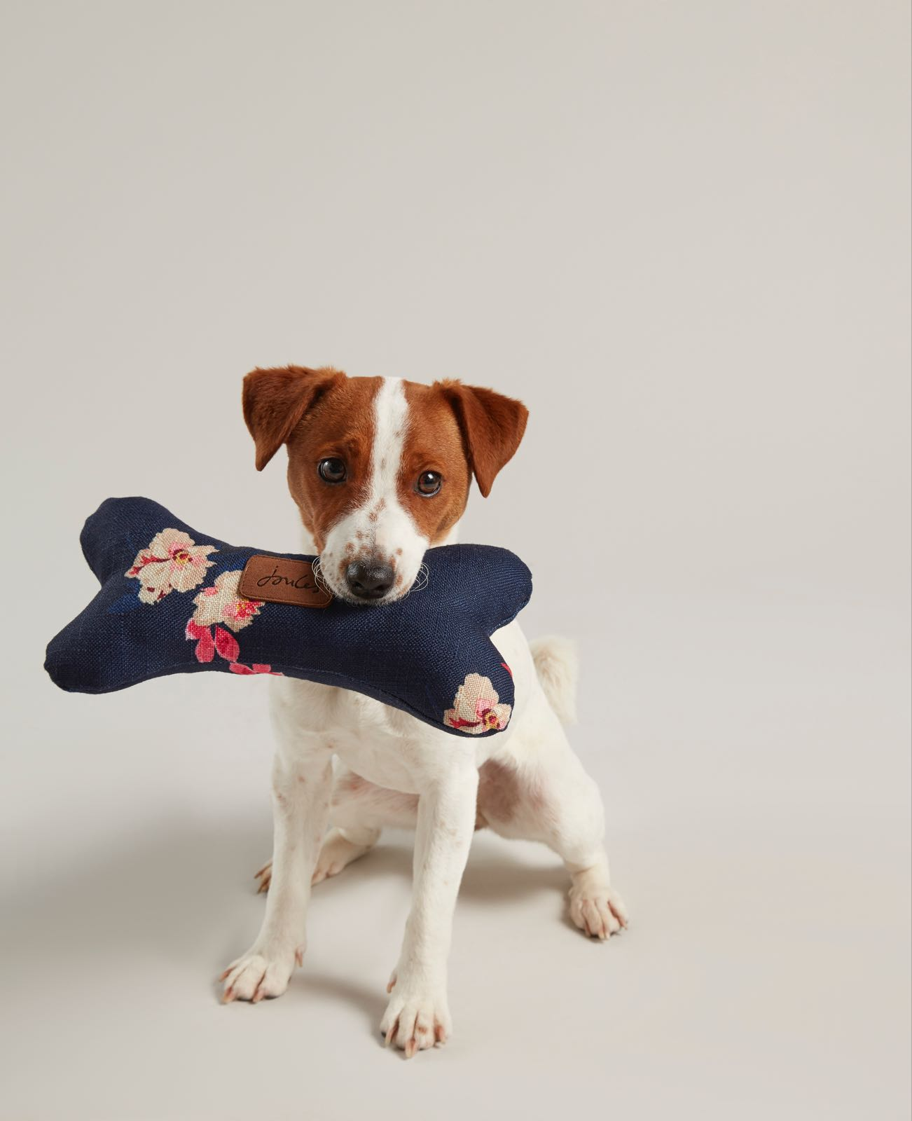 Joules floral Soft Bone Pet Toy