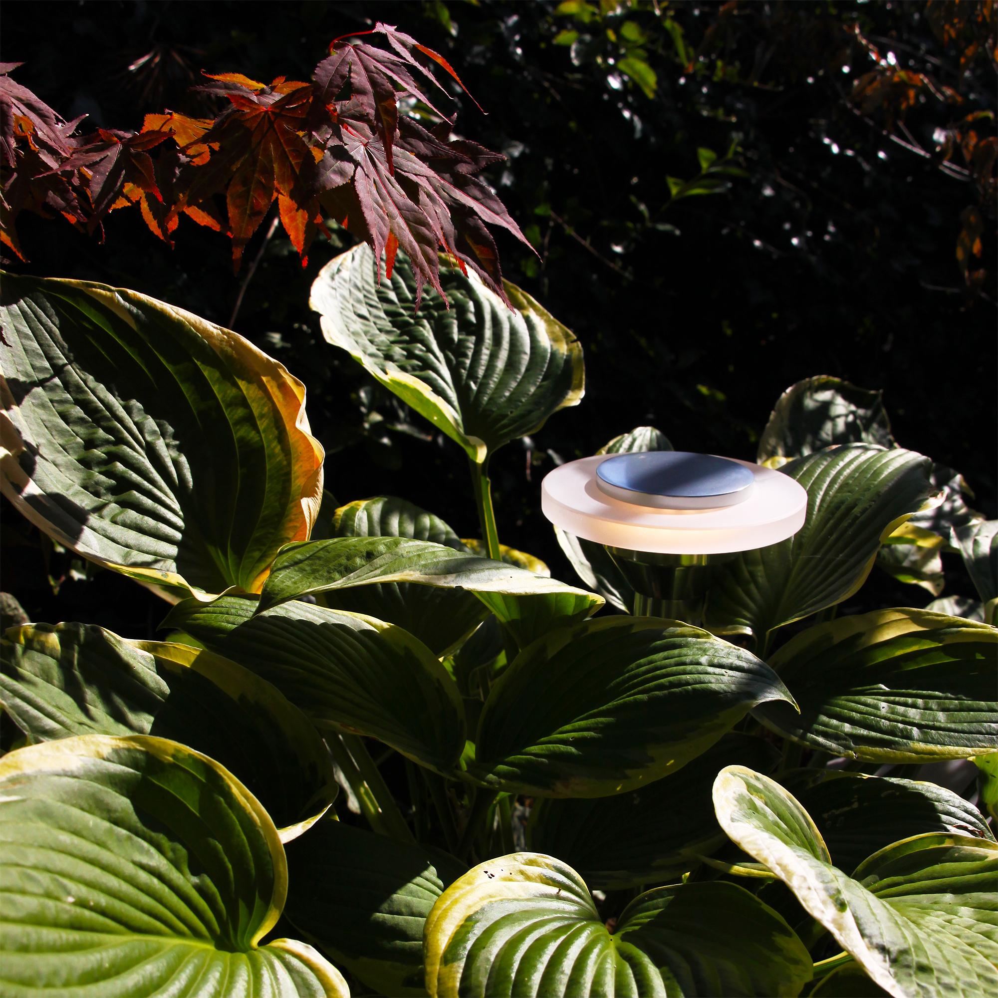 Ellips Trädgårdsbelysning - Lightson