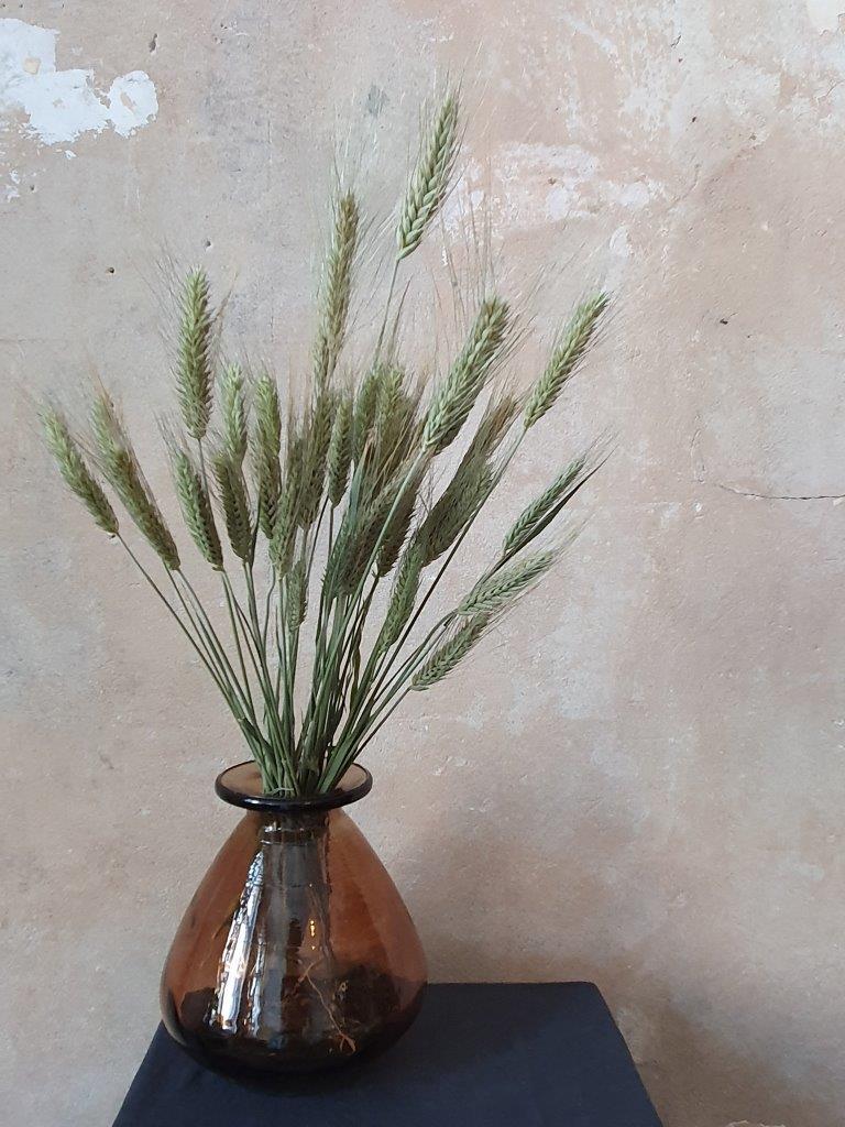 Triticale Natural Green (BU)