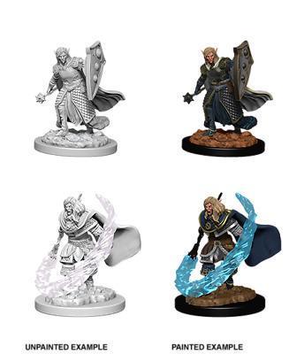 Elf Male Cleric