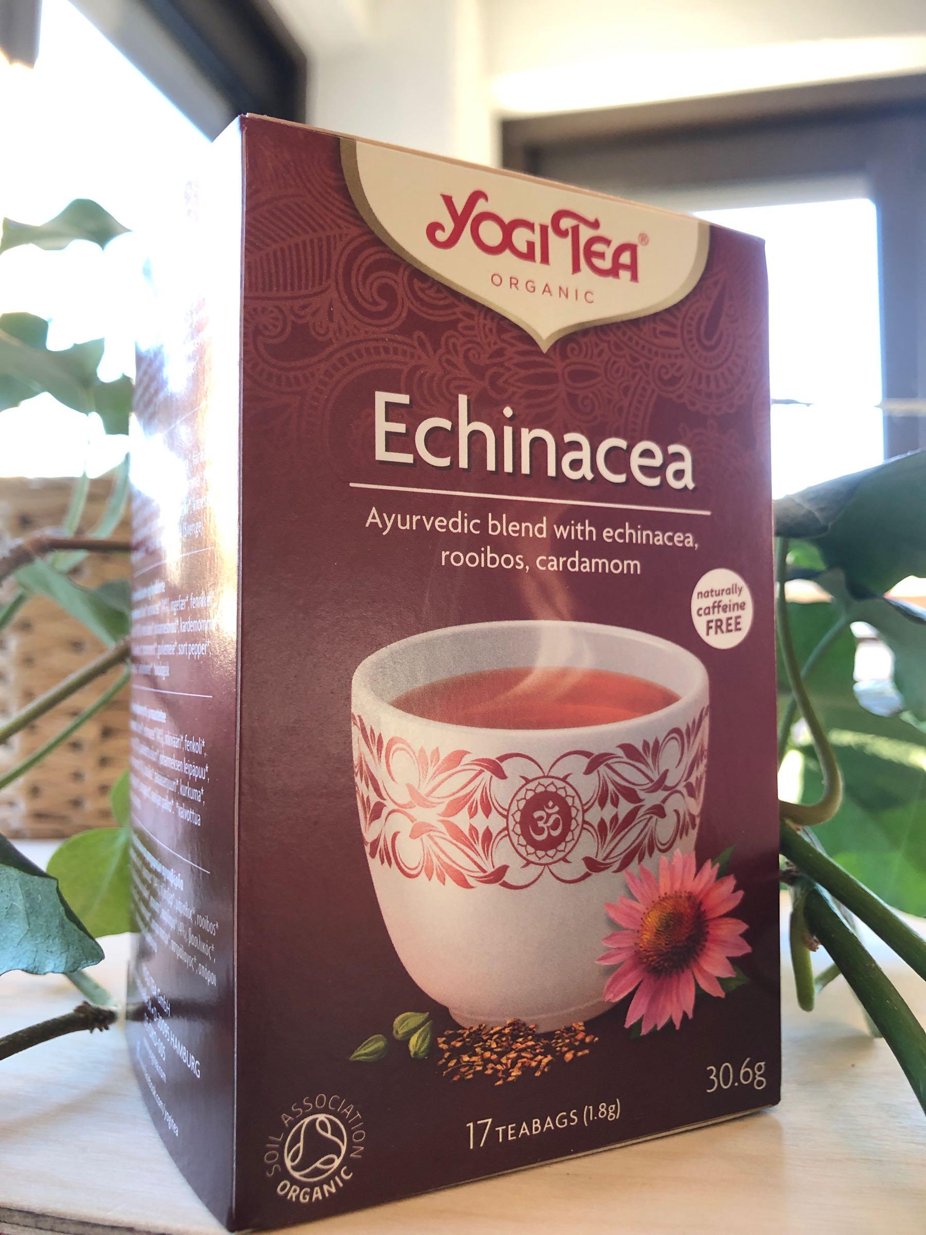 Echinacea Yogi Te