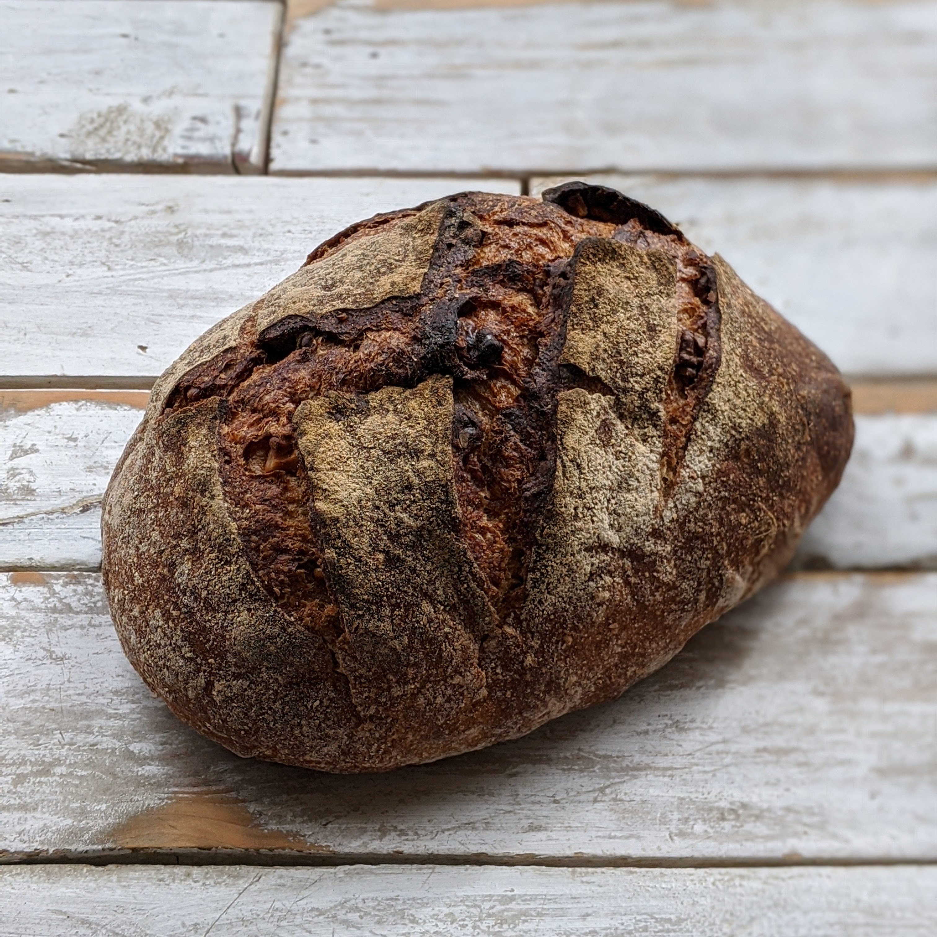 (SAT) Walnut Sourdough
