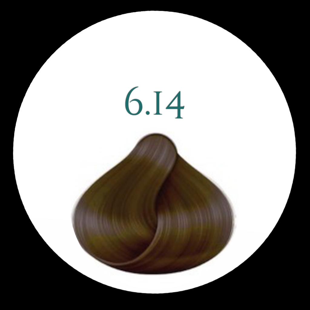 Hårfarve 6,14  Hasselnød