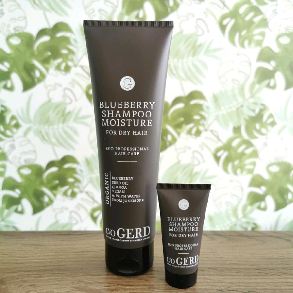 coGerd Shampoo Blueberry