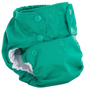 Dream Diaper 2.0 AIO - Lucky - Smart Bottoms