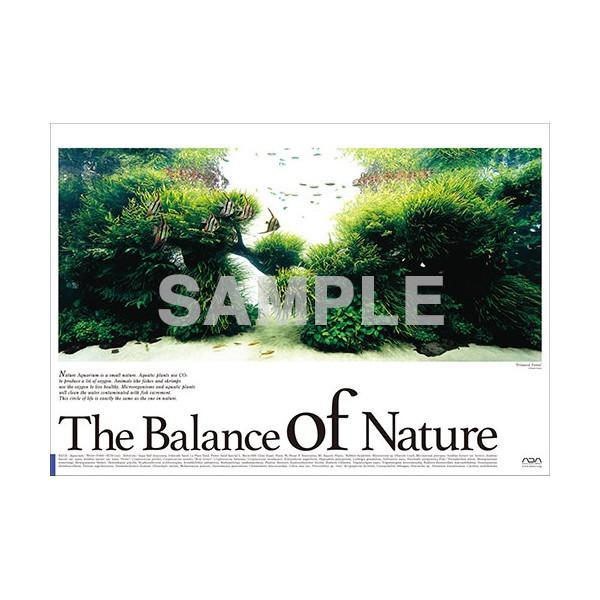 ADA Balance Of Nature Poster  (A. Pterophyllum altum)