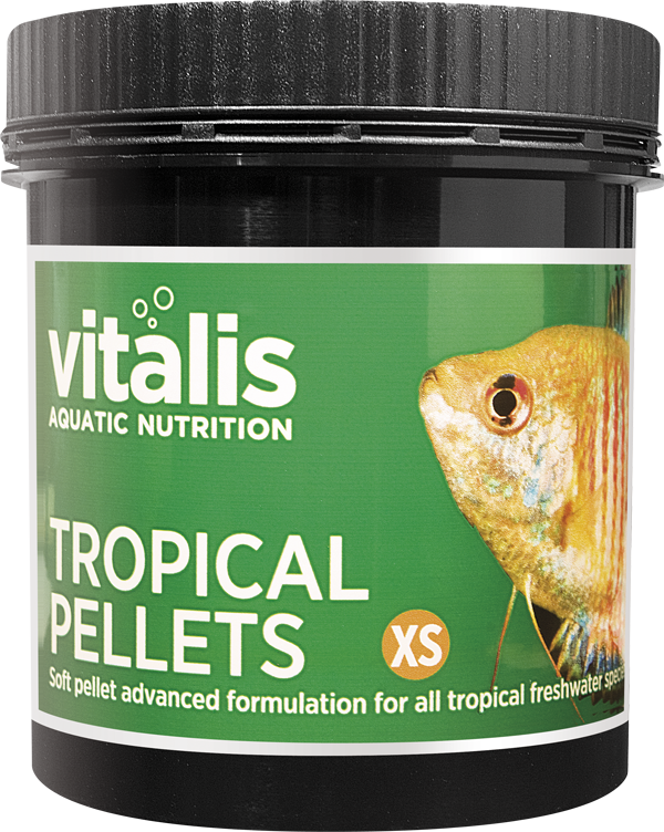 Vitalis Tropical Pellet xs