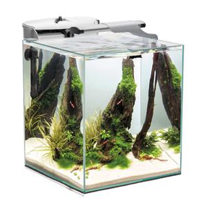 Aquael Shrimp set Duo 49 litre (click and collect only)