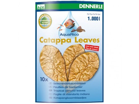 Dennerle Catappa Leaves Large
