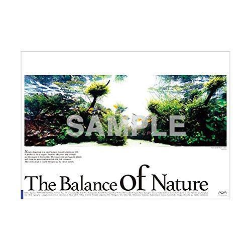 ADA Balance Of Nature Poster