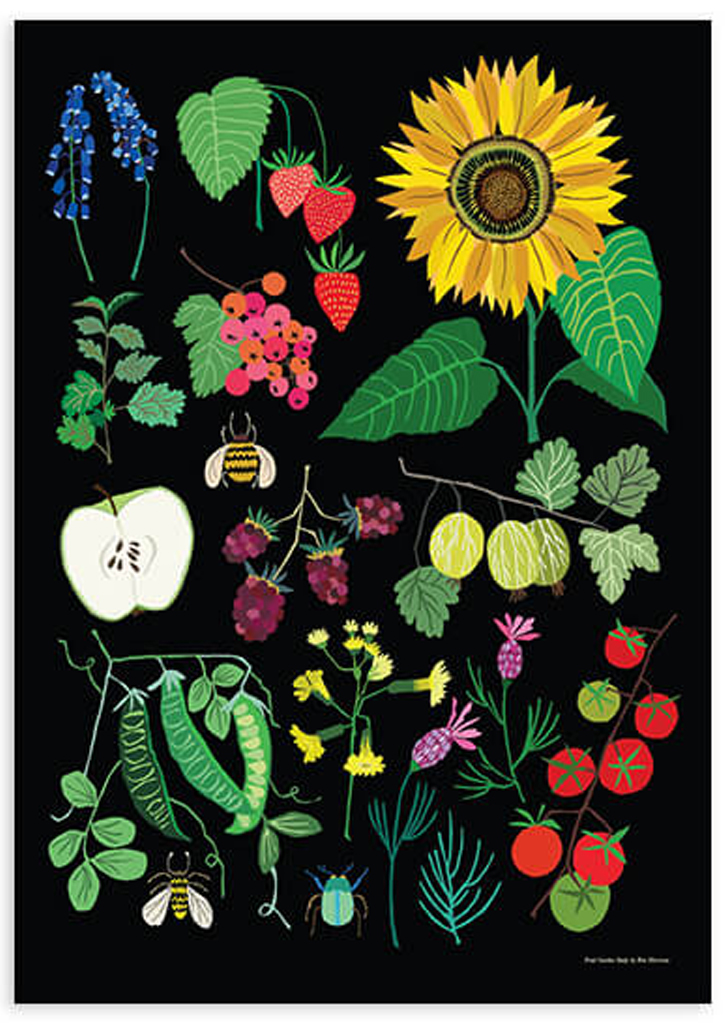 Fruit Garden Study print