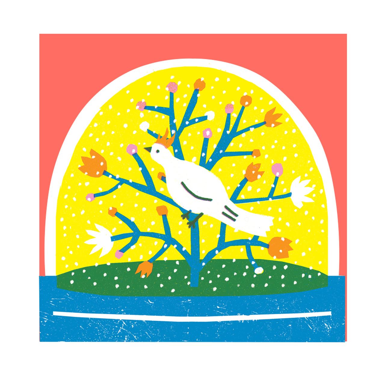 Snowglobe Bird Christmas Card