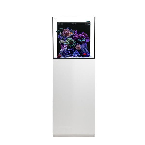 Waterbox Cube 20 + Cabinet