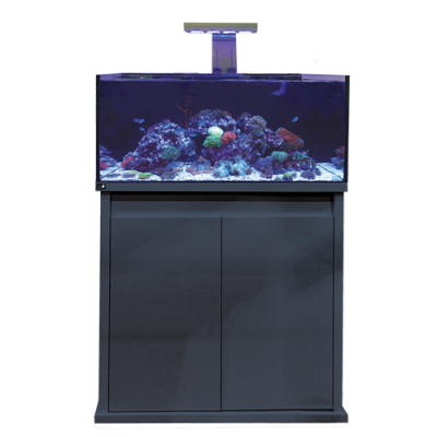 D-D Reef-Pro 900 High Gloss Anthracite