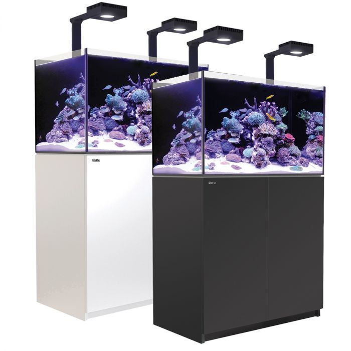 Red Sea Reefer Deluxe 250