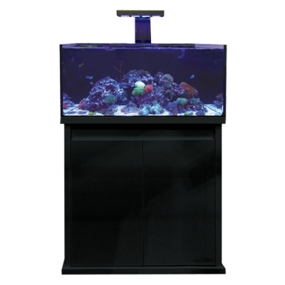 D-D Reef-Pro 900 High Gloss Black
