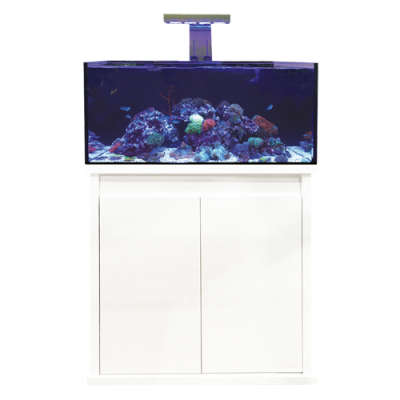 D-D Reef-Pro 900 High Gloss White