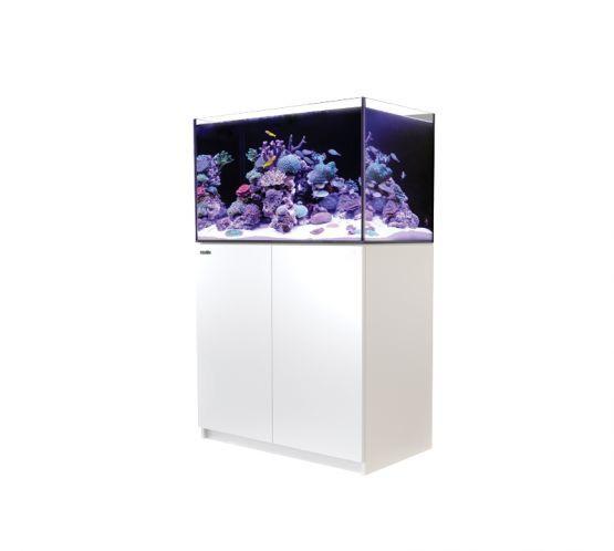 Red Sea Reefer 250 V3