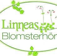 Linneas Blomsterhörna AB