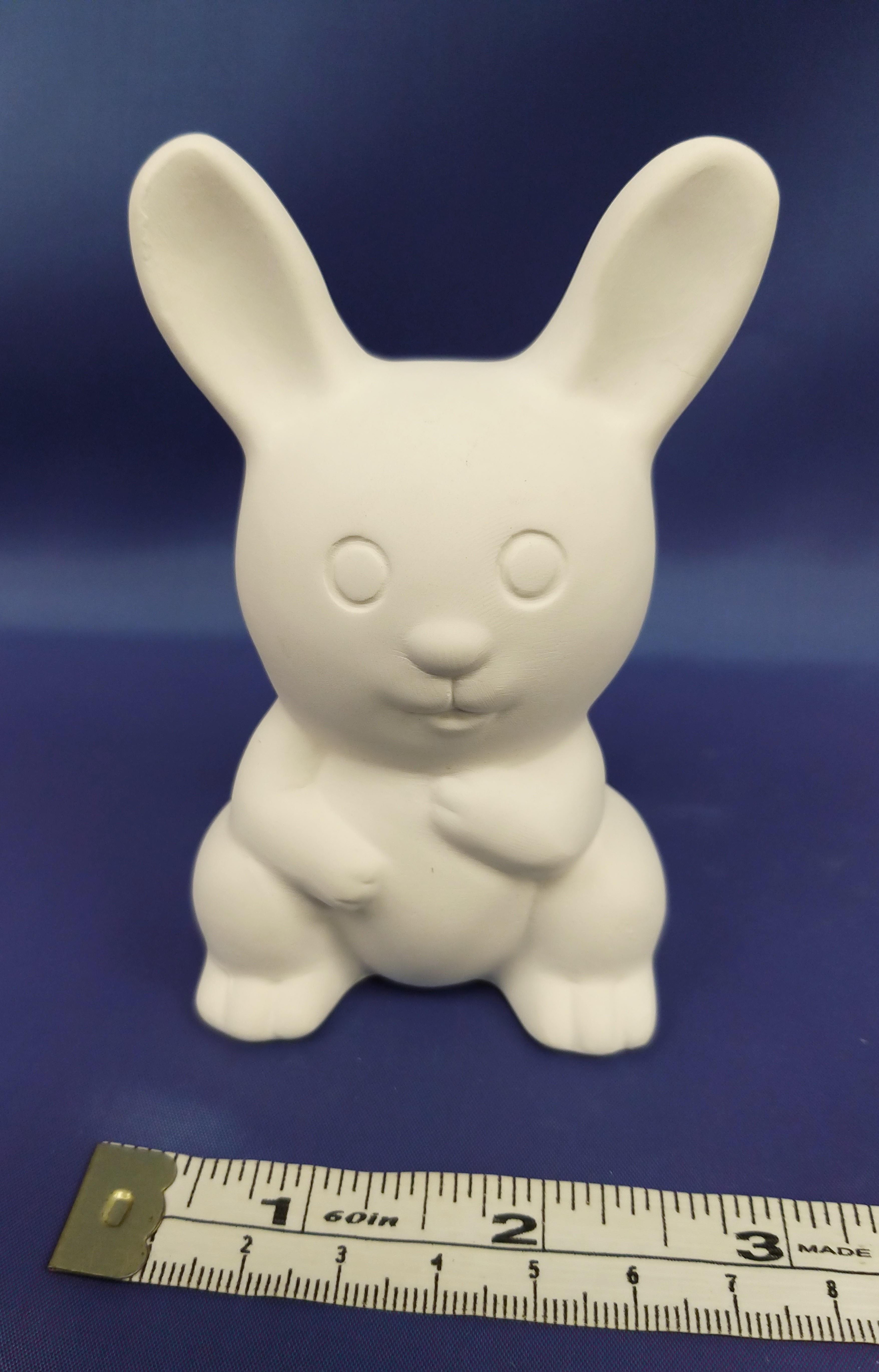Cute Wee Bunny