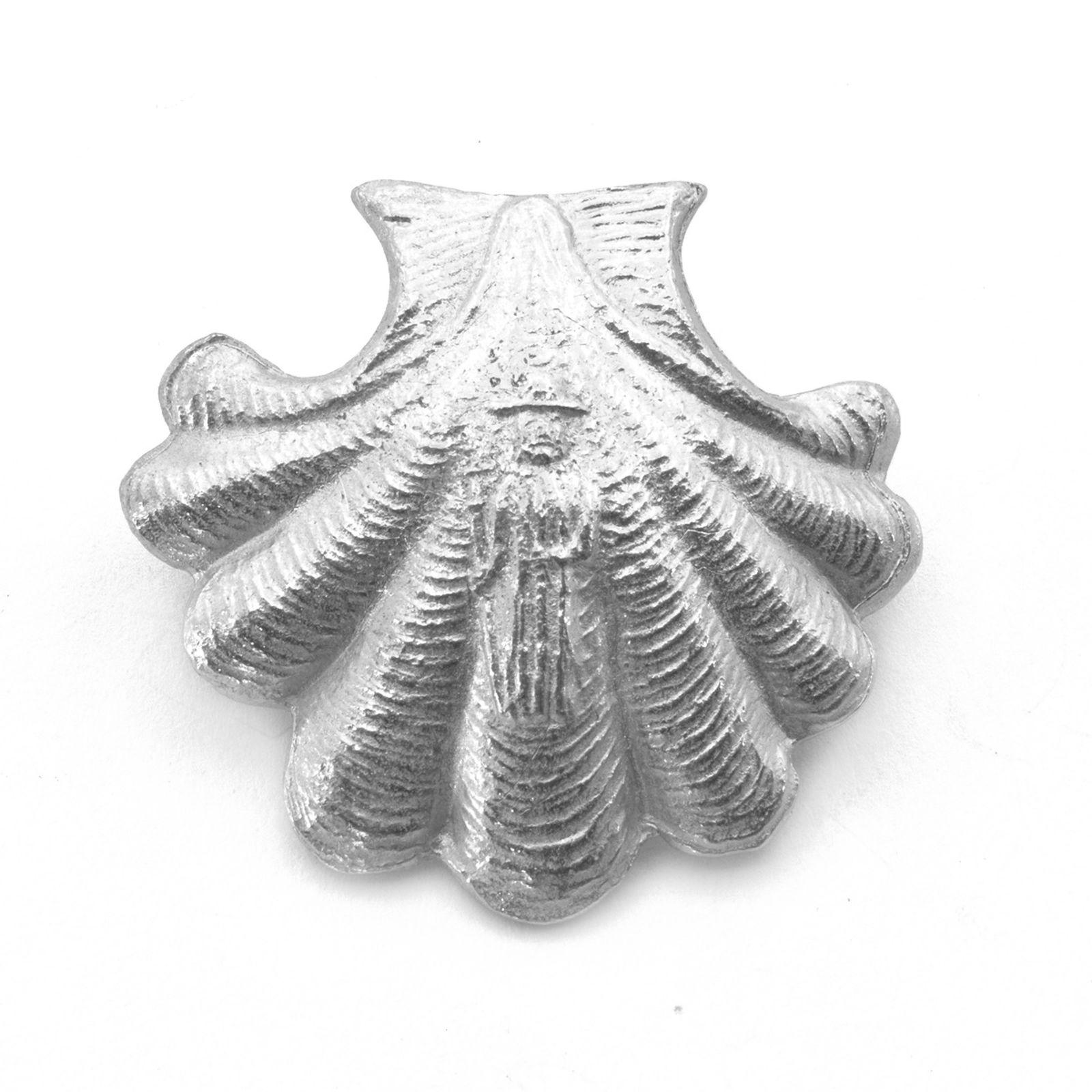 Kampasimpukan kuori Saint James 1350 tinapinssi