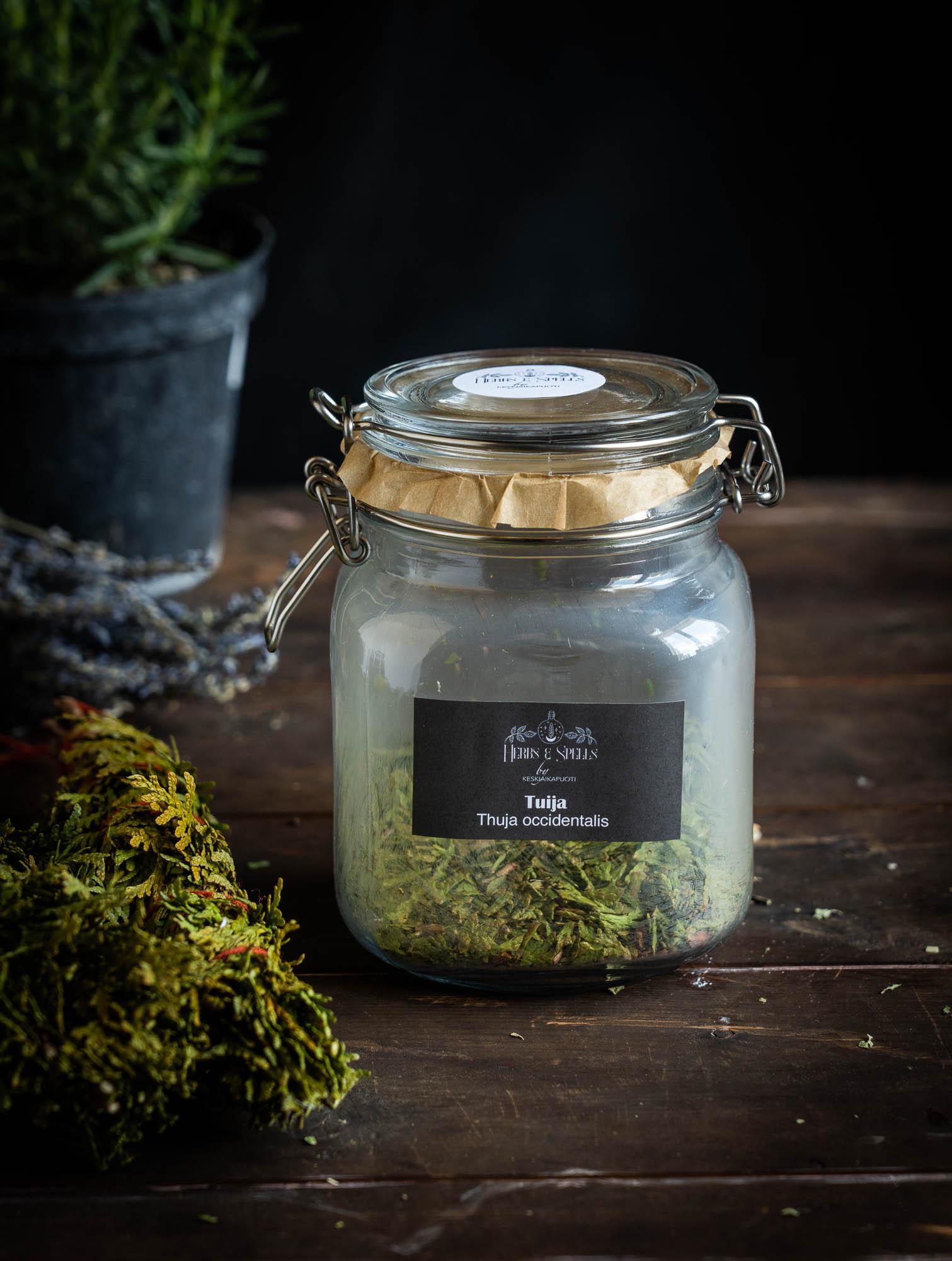 Tuija - Thuja occidentalis (Herbs&Spell by keskiaikapuoti)
