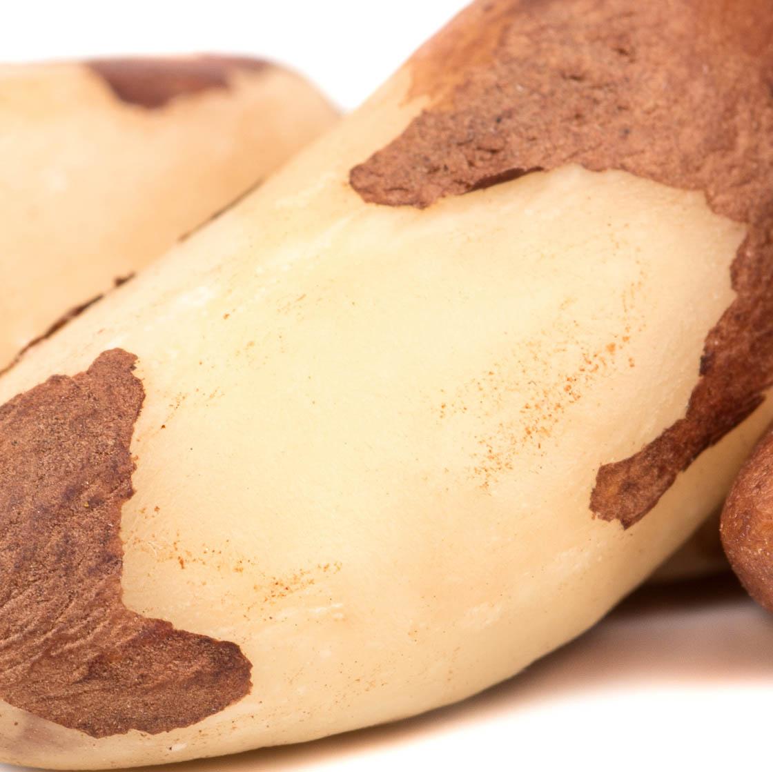 Brazil Nut (Organic)