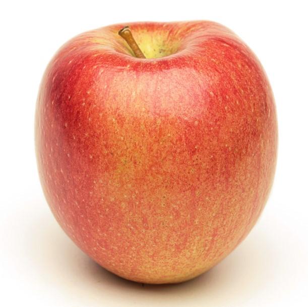 Apples, Different Varieties (UK)