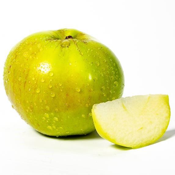 Apple Bramley (UK)
