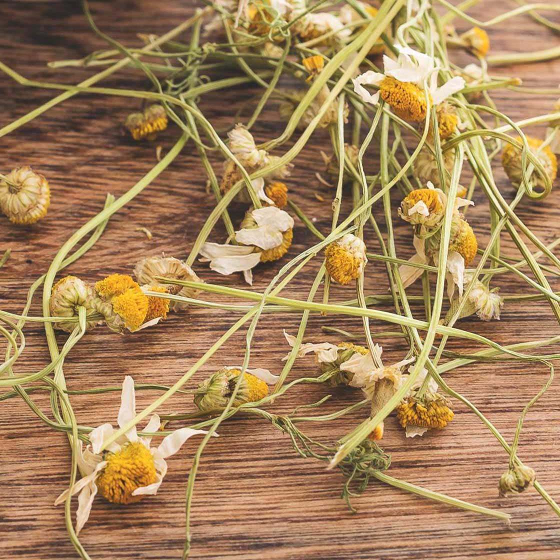 Chamomile Flowers (loose herbal tea)